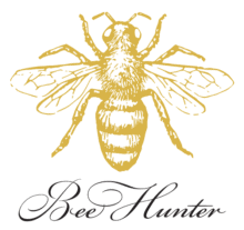 2019-BeeHunter-mff-version